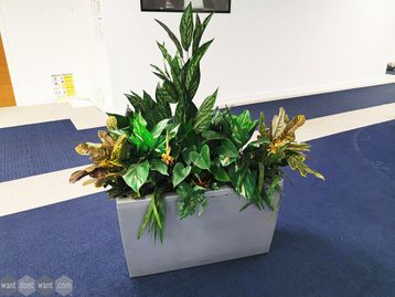 Used Office Planters