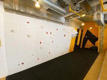 Used Climbing Wall - Over 11 Metres Split into Wall Mounted Panels