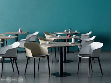 Brand New Cafe Breakout Chairs with Cushioned Seats
